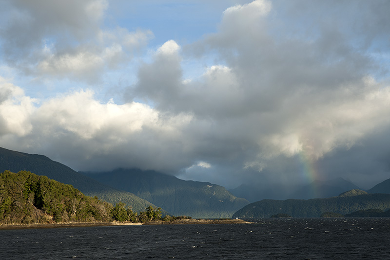 Manapouri See